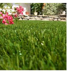 Pour une belle pelouse - Comment avoir une belle pelouse ...